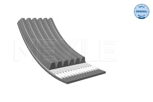 Gates V-Ribbed Belts 6PK1353 Fit with Ford Escort