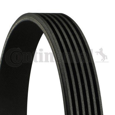 Contitech 6PK1250/ V-Ribbed Belts