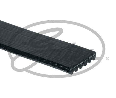 Contitech V-Ribbed Belt 6PK1400