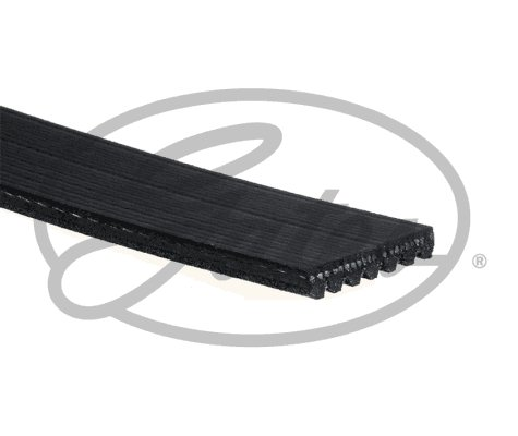 GATES 7PK1750 V-Ribbed Belt