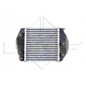 Aire de radiador-Van Wezel 27004188